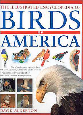 The Illustrated Encyclopedia of Birds of Americas book written by David Alderton
