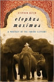 Elephas Maximus: A Portrait of the Indian Elephant book written by Stephen Alter
