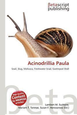 Acinodrillia Paula written by Lambert M. Surhone