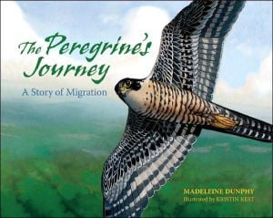 Peregrine's Journey: A Story of Migration book written by Madeleine Dunphy