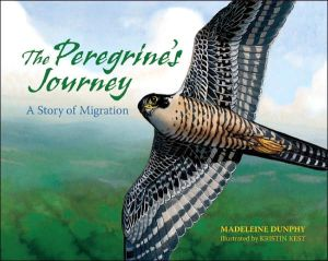 Peregrine's Journey: A Story of Migration written by Madeleine Dunphy