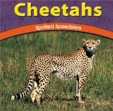 Cheetahs: Spotted Speedsters book written by Jody Sullivan