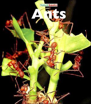 Ants book written by Edward S. Ross