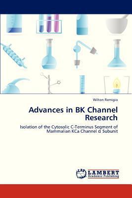 Advances in Bk Channel Research written by