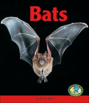 Bats book written by Joelle Riley