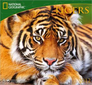 2012 Tigers - National Geographic Wall Calendar book written by Zebra Publishing