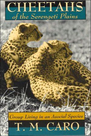 Cheetahs of the Serengeti Plains : book written by T. M. Caro