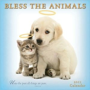 2011 Bless The Animals Wall Calendar book written by Dissero Brands