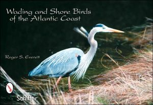 Wading and Shore Birds of the Atlantic Coast book written by Roger S. Everett