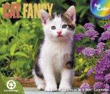 2011 Cat Fancy Box Calendar book written by MeadWestvaco