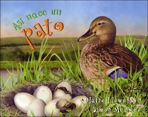 Así nace un pato book written by Claire Llewellyn