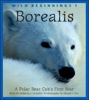 Borealis: A Polar Bear Cub's First Year book written by Rebecca L. Grambo