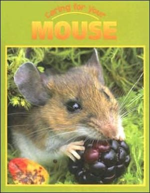 Caring for Your Mouse book written by Tamar Lupo