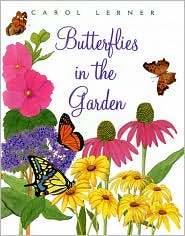 Butterflies in the Garden book written by Carol Lerner