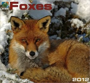 2012 Foxes Wall Calendar book written by Zebra Publishing