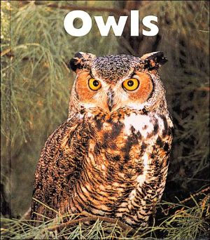 Owls book written by Michael George