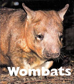 Wombats book written by Mary Berendes