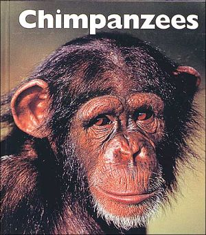 Chimpanzees book written by Mary Ann McDonald