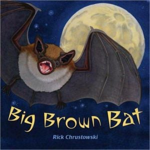 Big Brown Bat book written by Rick Chrustowski