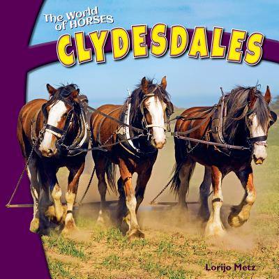 Clydesdales book written by Lorijo Metz