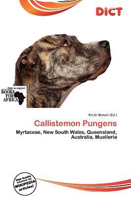 Callistemon Pungens written by Kn Tr Benoit