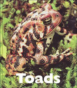 Toads book written by Patrick Merrick