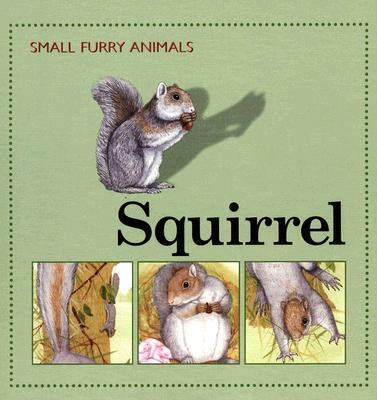 Squirrel book written by Ting Morris