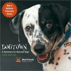 Dogtown: A Sanctuary for Rescued Dogs written by Bob Somerville