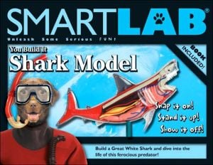 Snap-Together Shark Model written by David George Gordon