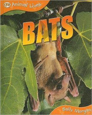 Bats: Animal Lives Series book written by Sally Morgan