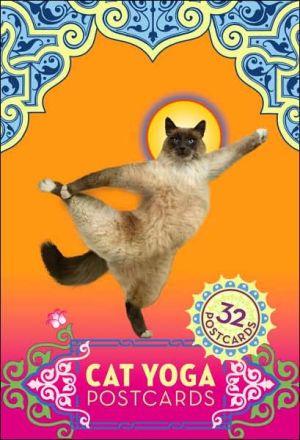 Cat Yoga Postcards book written by Rick Tillotson