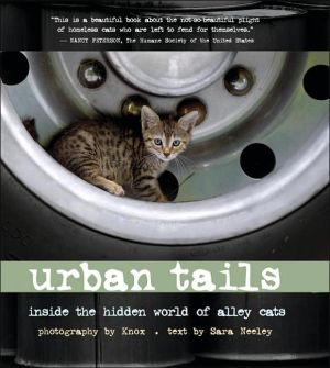 Urban Tails: Inside the Hidden World of Alley Cats book written by Knox
