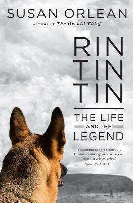 Rin Tin Tin book written by Orlean, Susan