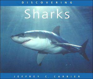 Discovering Sharks book written by Jeffrey Carrier