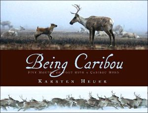 Being Caribou: Five Months on Foot with a Wild Caribou Herd book written by Karsten Heuer