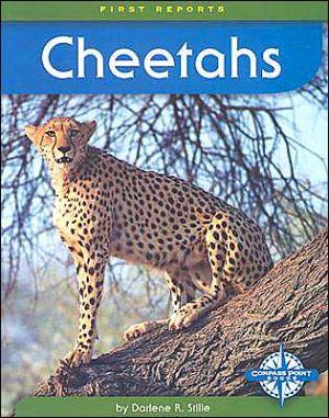 Cheetahs (First Reports) book written by Darlene R. Stille