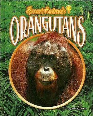 Orangutans book written by Meish Goldish