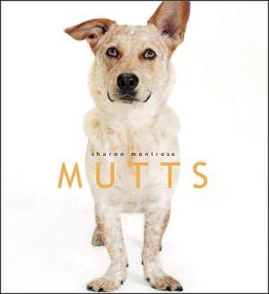 Mutts book written by Sharon Montrose