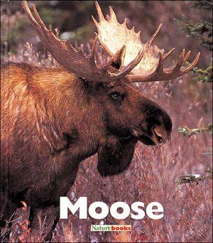 Moose book written by Jenny Markert