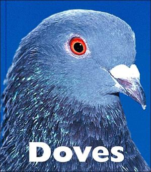 Doves book written by Mary Ann McDonald