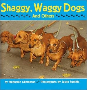 Shaggy, Waggy Dogs (And Others) book written by Stephanie Calmenson