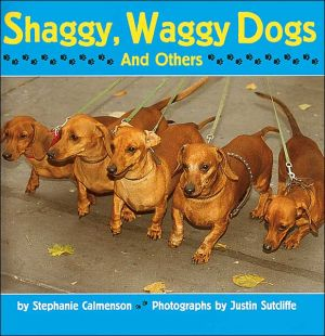 Shaggy, Waggy Dogs (And Others) written by Stephanie Calmenson