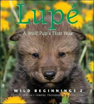 Lupe: A Wolf Cub's First Year book written by Rebecca L. Grambo