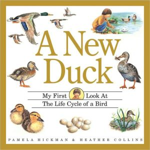 A New Duck: My First Look at the Life Cycle of a Bird book written by Pamela Hickman
