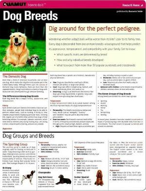 Dog Breeds (Quamut) book written by Quamut