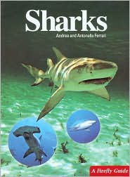 Sharks book written by Andrea Ferrari, Anna Bennett, Antonella Ferrari