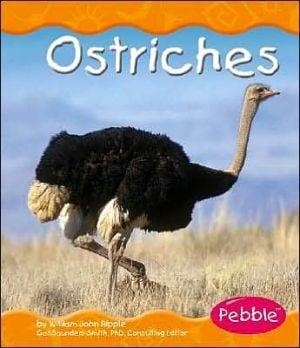 Ostriches book written by William John Ripple