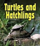Turtles and Hatchlings book written by Ann-Marie Kishel