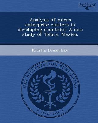 Analysis of Micro Enterprise Clusters in Developing Countries written by Kristin Drauschke