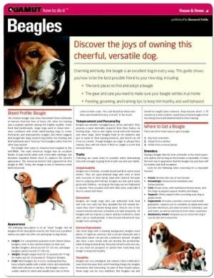 Beagle (Quamut) book written by Quamut